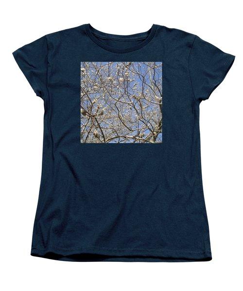 Pussywillows Bursting To Life Women's T-Shirt (Standard Cut)
