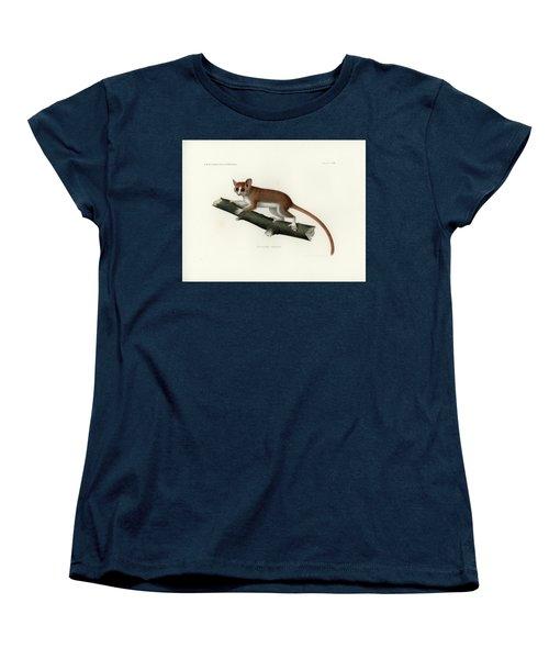 Pygmy Mouse Lemur Women's T-Shirt (Standard Cut) by Hugo Troschel