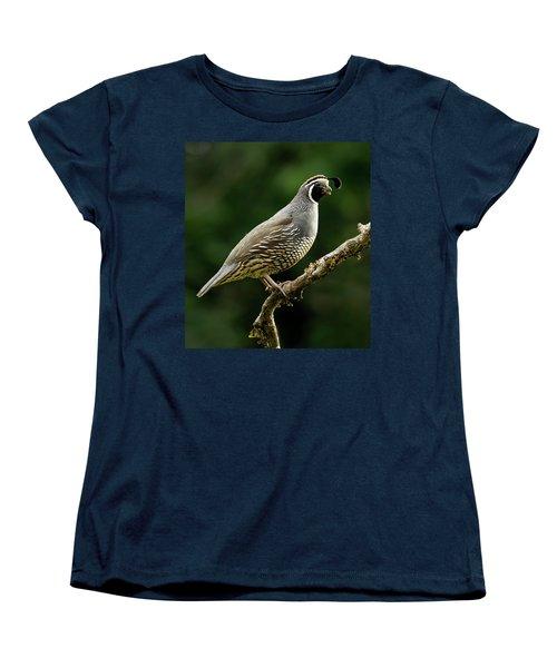 Quail  Women's T-Shirt (Standard Cut) by Inge Riis McDonald