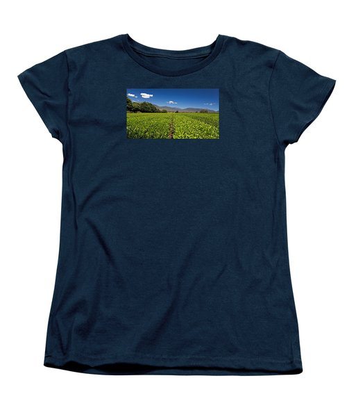 Ready For Harvest Women's T-Shirt (Standard Cut) by Mark Lucey