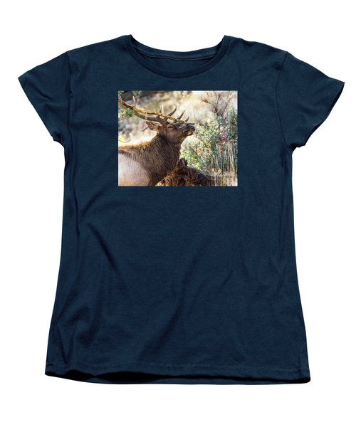 Ready For Rut Women's T-Shirt (Standard Cut) by Yeates Photography