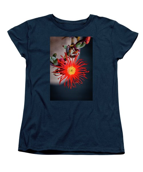 Red Crab Flower Women's T-Shirt (Standard Cut) by Bruno Spagnolo