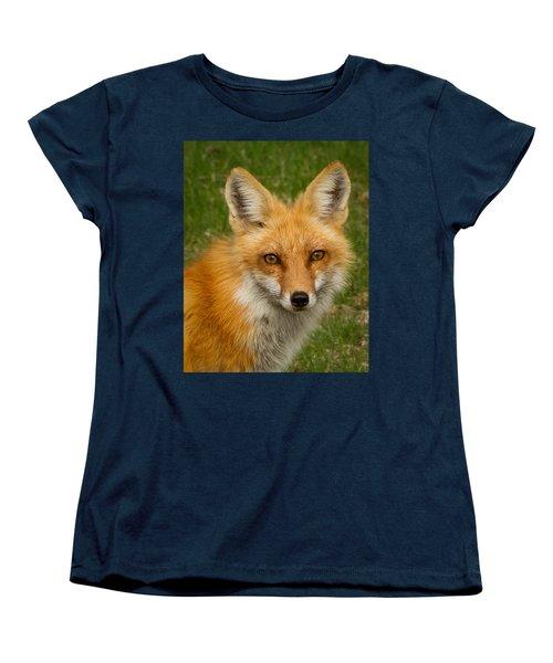 Red Fox Portrait Women's T-Shirt (Standard Cut) by Brian Caldwell