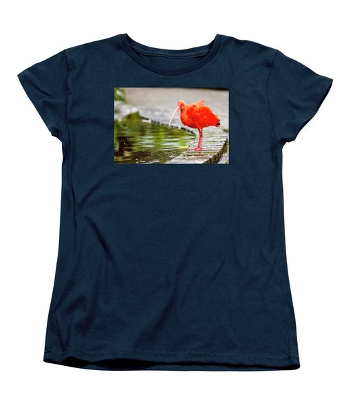 Women's T-Shirt (Standard Cut) featuring the photograph Red Ibis by Alexey Stiop