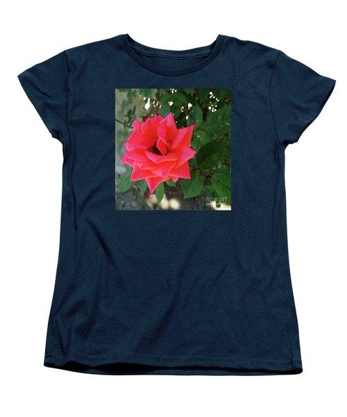 Pink Rose  Women's T-Shirt (Standard Cut) by Don Pedro De Gracia