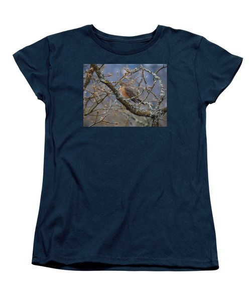 Robin In A Tree Women's T-Shirt (Standard Cut) by Keith Boone