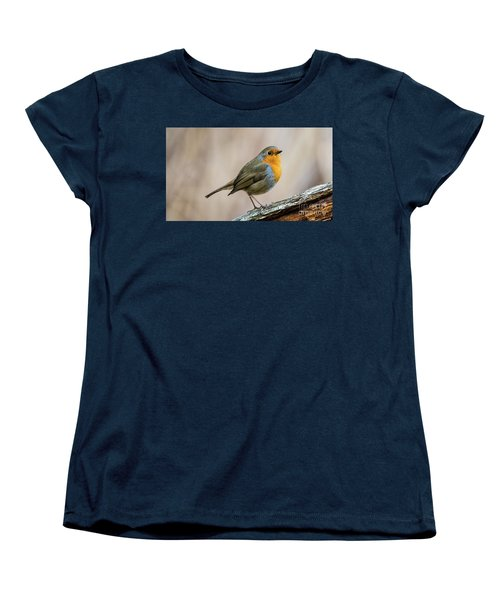 Robin In Spring Women's T-Shirt (Standard Cut) by Torbjorn Swenelius