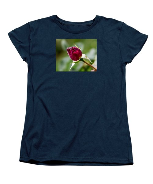 Women's T-Shirt (Standard Cut) featuring the photograph Rosebud by Cathy Donohoue