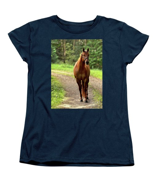 Rosey On The Road Women's T-Shirt (Standard Cut) by Michelle Twohig