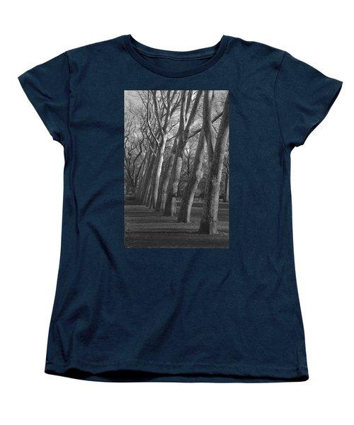 Row Trees Women's T-Shirt (Standard Cut) by Henri Irizarri