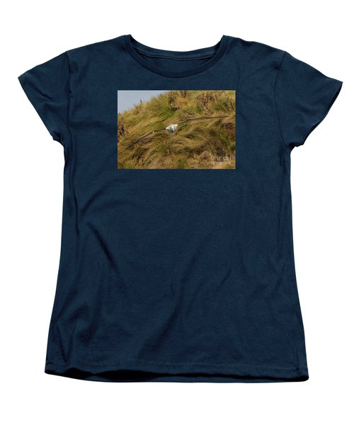 Royal Albatross 2 Women's T-Shirt (Standard Cut) by Werner Padarin
