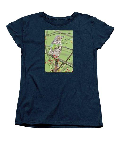 Sage Thrasher Women's T-Shirt (Standard Cut) by Alan Lenk