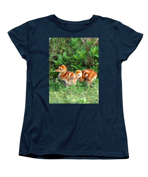 Sandhill Crane Chicks 002 Women's T-Shirt (Standard Cut) by Chris Mercer