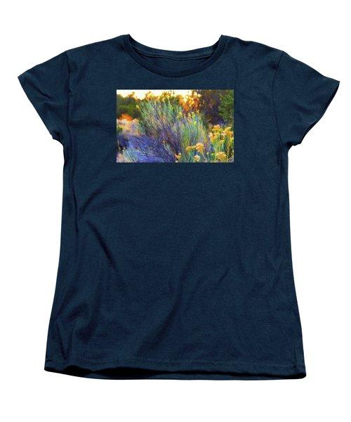 Santa Fe Beauty Women's T-Shirt (Standard Cut) by Stephen Anderson
