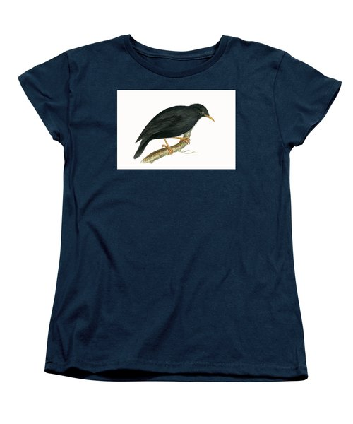 Sardinian Starling Women's T-Shirt (Standard Cut) by English School