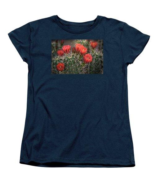 Women's T-Shirt (Standard Cut) featuring the photograph Scarlet Hedgehog Cactus  by Saija Lehtonen