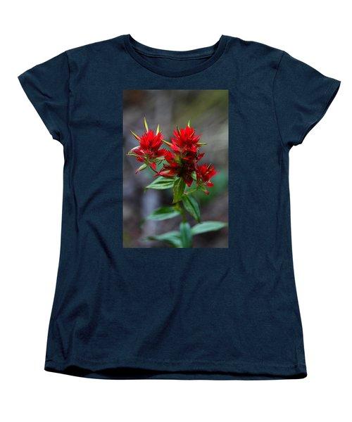 Scarlet Red Indian Paintbrush Women's T-Shirt (Standard Cut) by Karon Melillo DeVega