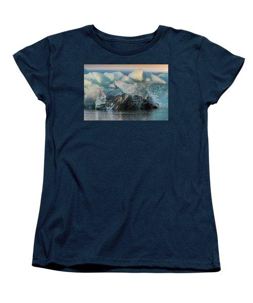 Seal Nature Sculpture Women's T-Shirt (Standard Cut) by Allen Biedrzycki