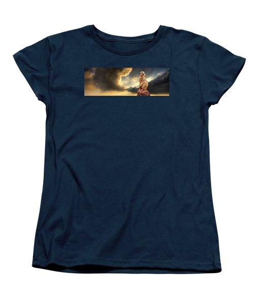 Sentry Duty Women's T-Shirt (Standard Cut) by Meirion Matthias