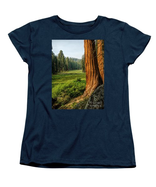Sequoia Np Crescent Meadows Women's T-Shirt (Standard Cut) by Daniel Heine