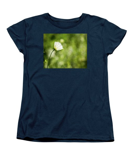 She's Everything I've Ever Wanted Women's T-Shirt (Standard Cut) by Wade Brooks