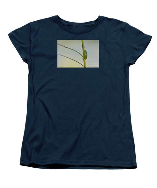 Women's T-Shirt (Standard Cut) featuring the photograph  Doris Day Shining Bright by Kathy Gibbons
