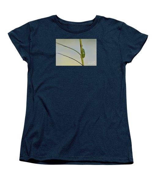 Doris Day Shining Bright Women's T-Shirt (Standard Cut) by Kathy Gibbons