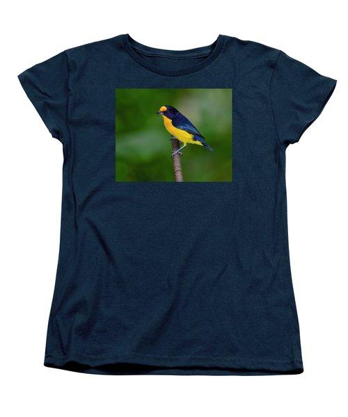 Short Round Women's T-Shirt (Standard Cut) by Tony Beck