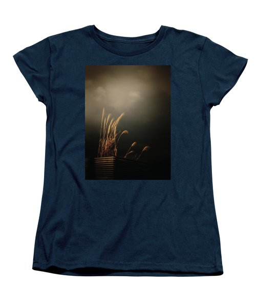 Silver Grass Women's T-Shirt (Standard Cut) by Rachel Mirror
