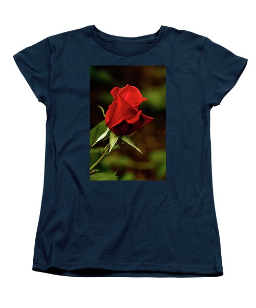 Single Red Rose Bud Women's T-Shirt (Standard Cut) by Jacqi Elmslie