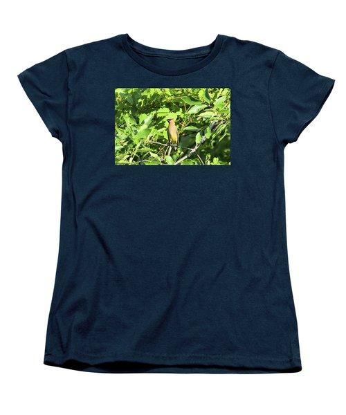Sitting Pretty Women's T-Shirt (Standard Cut) by David Stasiak