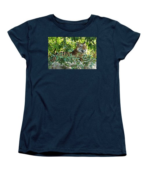 Sleepy Cat Women's T-Shirt (Standard Cut) by Pravine Chester