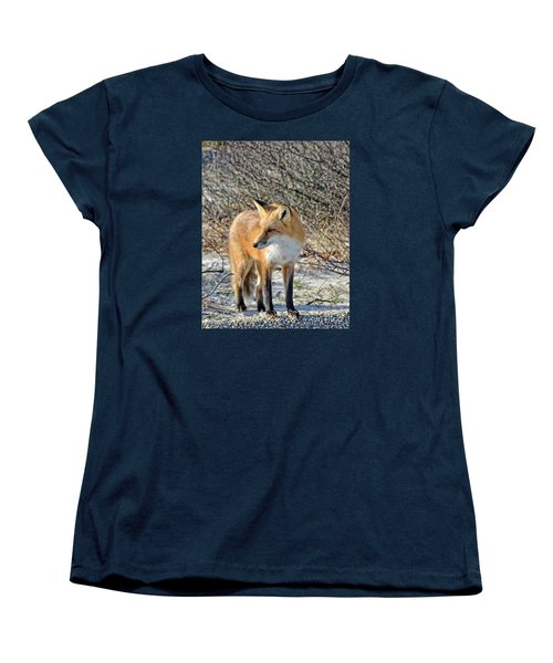 Women's T-Shirt (Standard Cut) featuring the photograph Sly Little Fox by Sami Martin