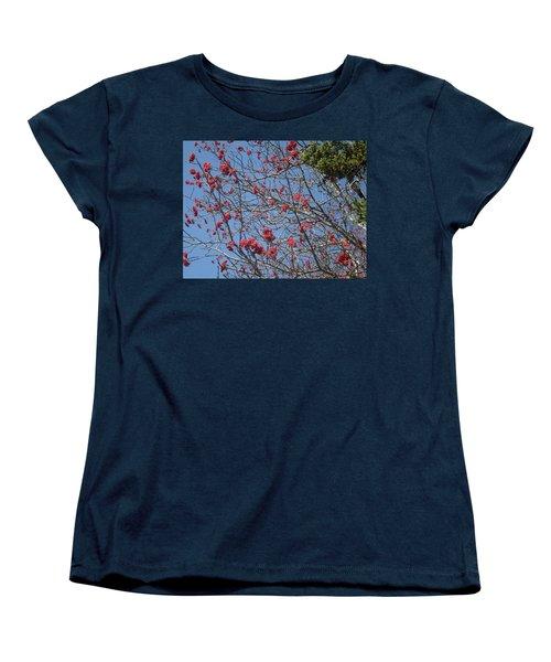 Smokies 8 Women's T-Shirt (Standard Cut) by Val Oconnor