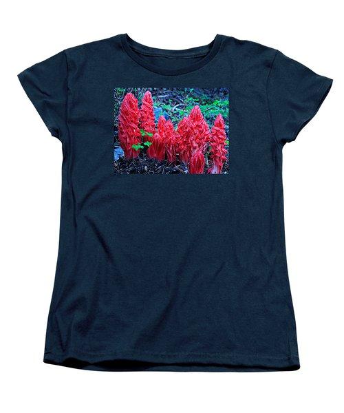 Snowflower Pow Wow Women's T-Shirt (Standard Cut)