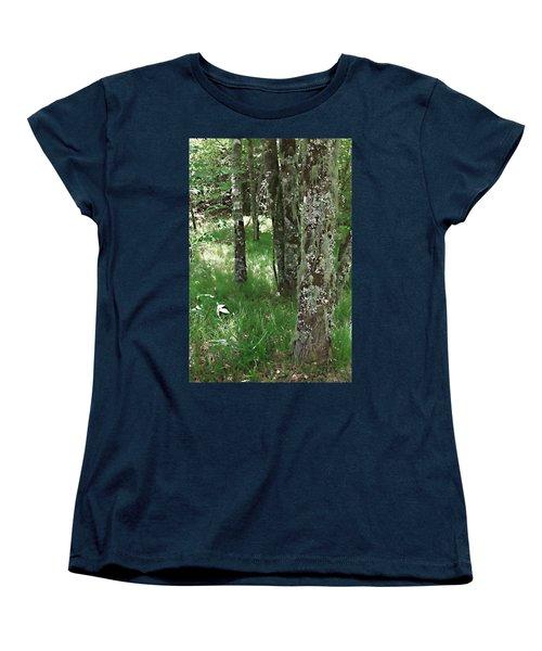 Soft Trees Women's T-Shirt (Standard Cut) by Shari Jardina
