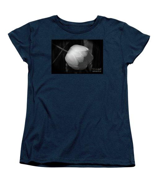 Softly Women's T-Shirt (Standard Cut) by Jim Gillen