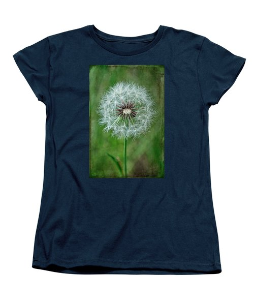 Women's T-Shirt (Standard Cut) featuring the photograph Softly Sitting by Jan Amiss Photography