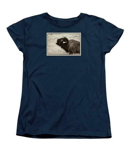Something In The Air Women's T-Shirt (Standard Cut) by Elizabeth Eldridge