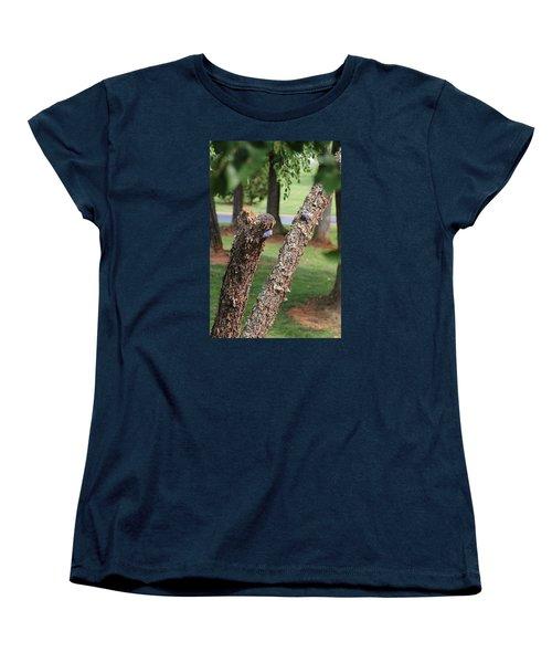 Southern Blue Birds Women's T-Shirt (Standard Cut) by Debra     Vatalaro