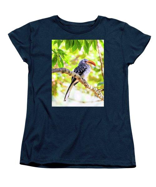 Southern Yellow Billed Hornbill Women's T-Shirt (Standard Cut) by Alexey Stiop