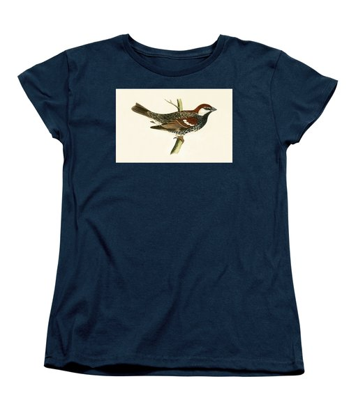 Spanish Sparrow Women's T-Shirt (Standard Cut) by English School