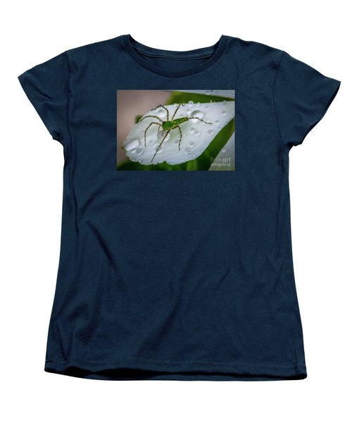 Spider And Flower Petal Women's T-Shirt (Standard Cut) by Tom Claud