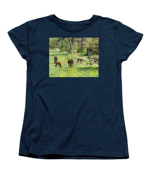 Spring Colts Women's T-Shirt (Standard Cut) by John Robert Beck