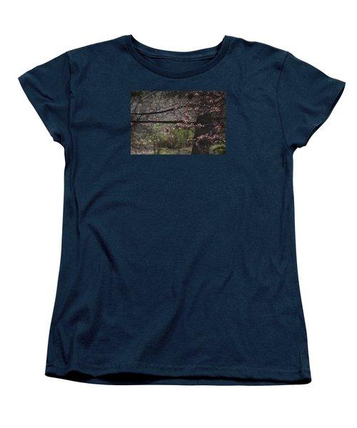 Spring Crabapple Women's T-Shirt (Standard Cut) by Morris  McClung