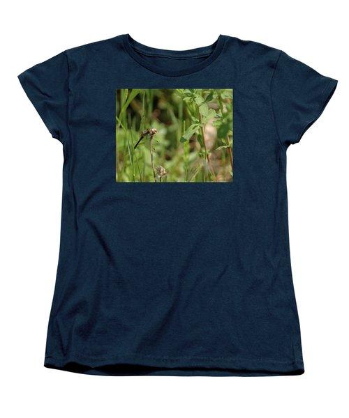 Women's T-Shirt (Standard Cut) featuring the photograph Spring Dragonfly by LeeAnn McLaneGoetz McLaneGoetzStudioLLCcom