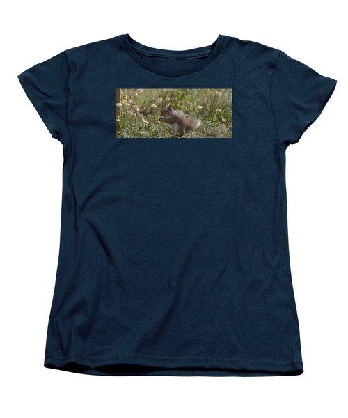 Spring Squirrel Women's T-Shirt (Standard Cut) by Diane Giurco