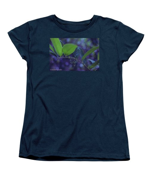 squiggle Vine Women's T-Shirt (Standard Cut)