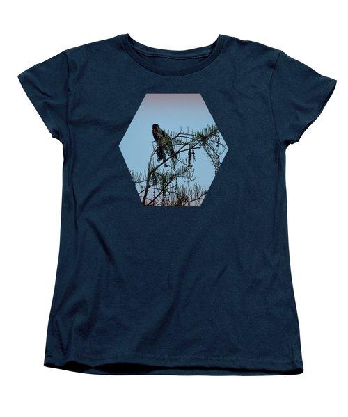 Stillness Women's T-Shirt (Standard Cut) by Jim Hill