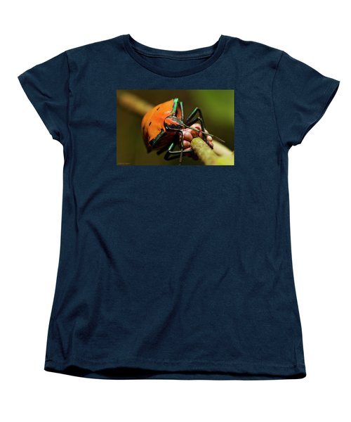 Stink Bug 666 Women's T-Shirt (Standard Cut) by Kevin Chippindall